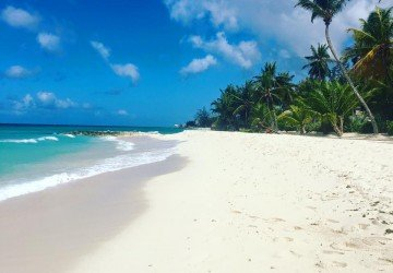Family Travel: Barbados with the brood