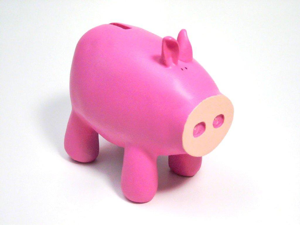 oink oink piggy bank 2 1552310