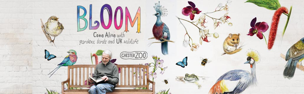 Bloom Chester Zoo
