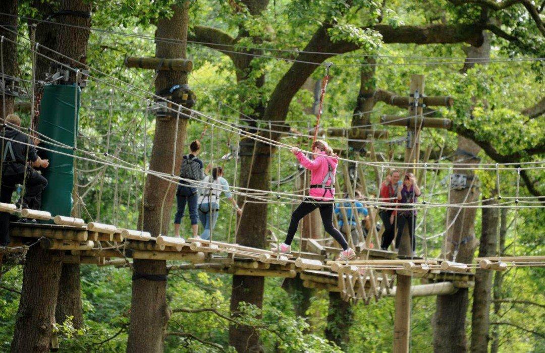Treetop Trek Is Coming To Manchester Parentfolk