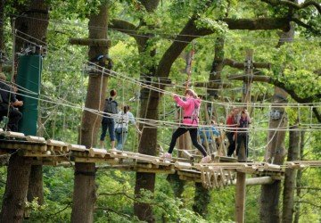 Treetop Trek is coming to Manchester