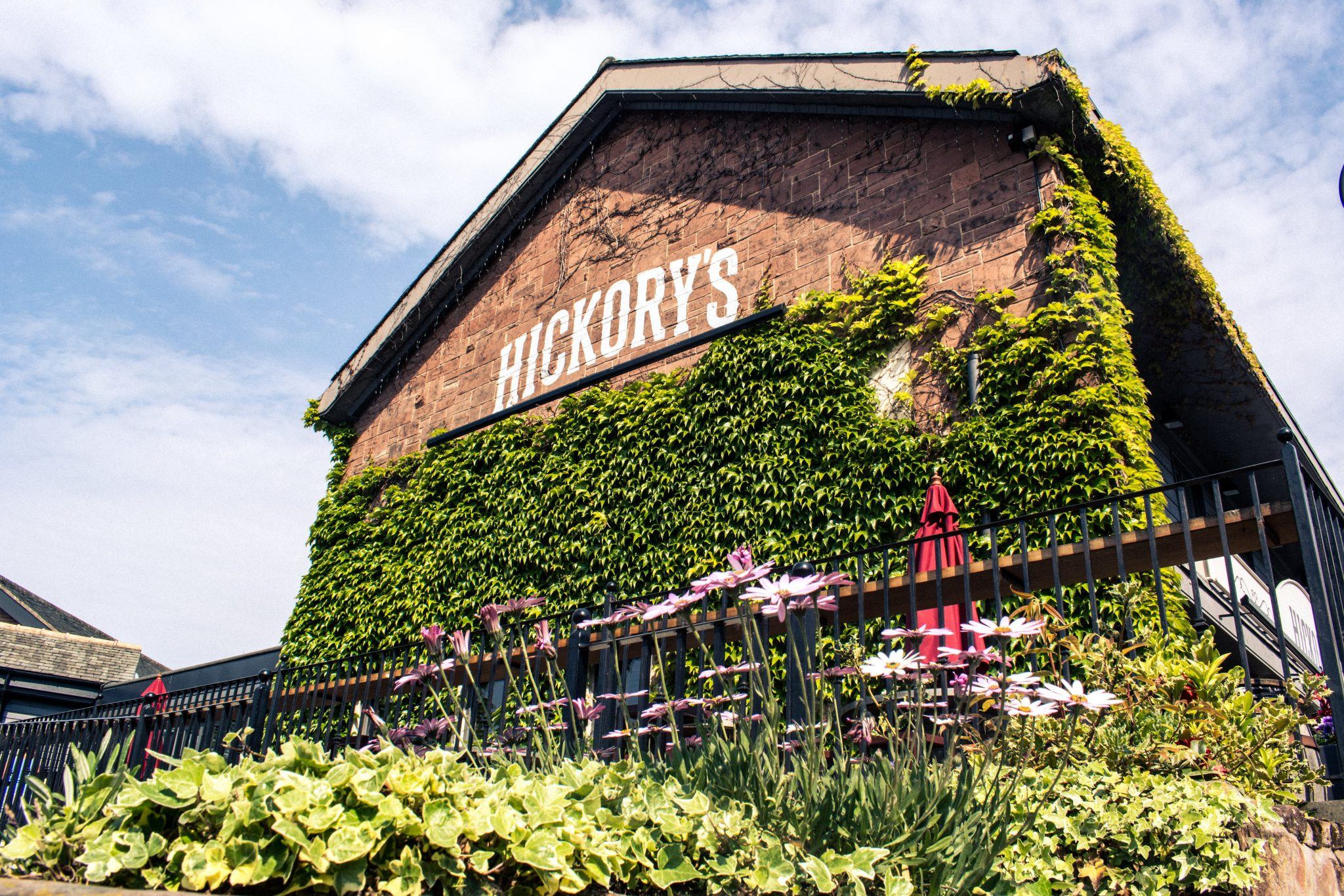 Hickorys WK Front 1