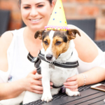 Party Hat Dog