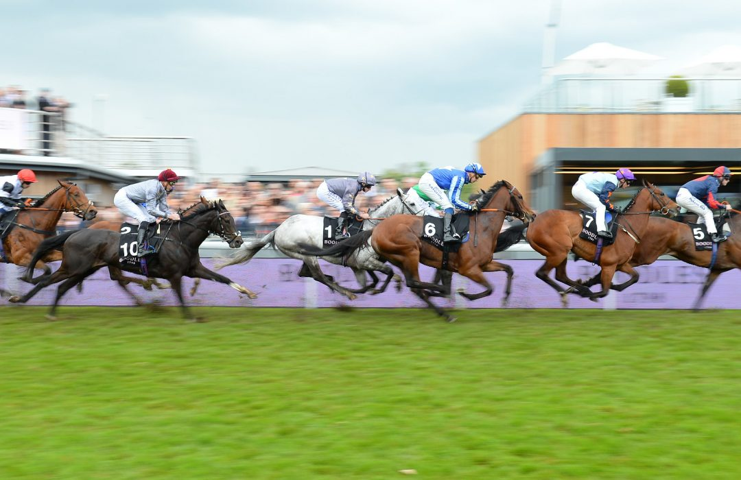 CHESTER RACECOURSE TO HOST FIRST NORTHERN PROPERTY RACEDAY