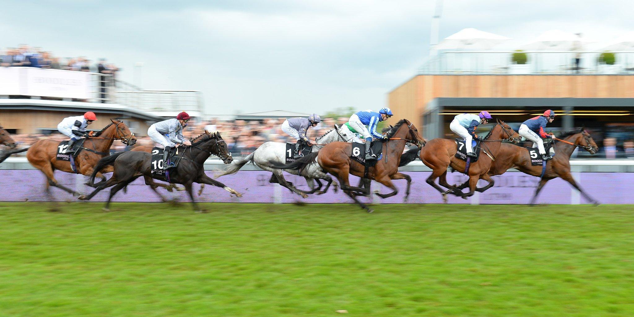 Chester Racecourse 2