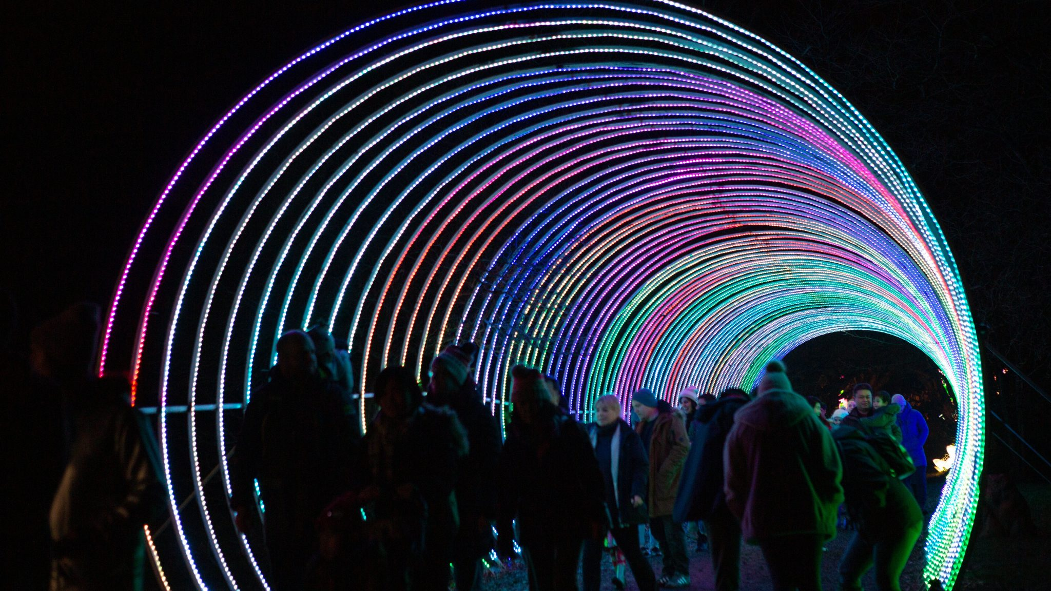 Lightopia Tunnel